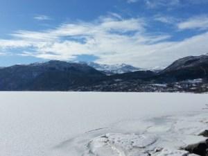 Frozen Expase of Sauda Fjord